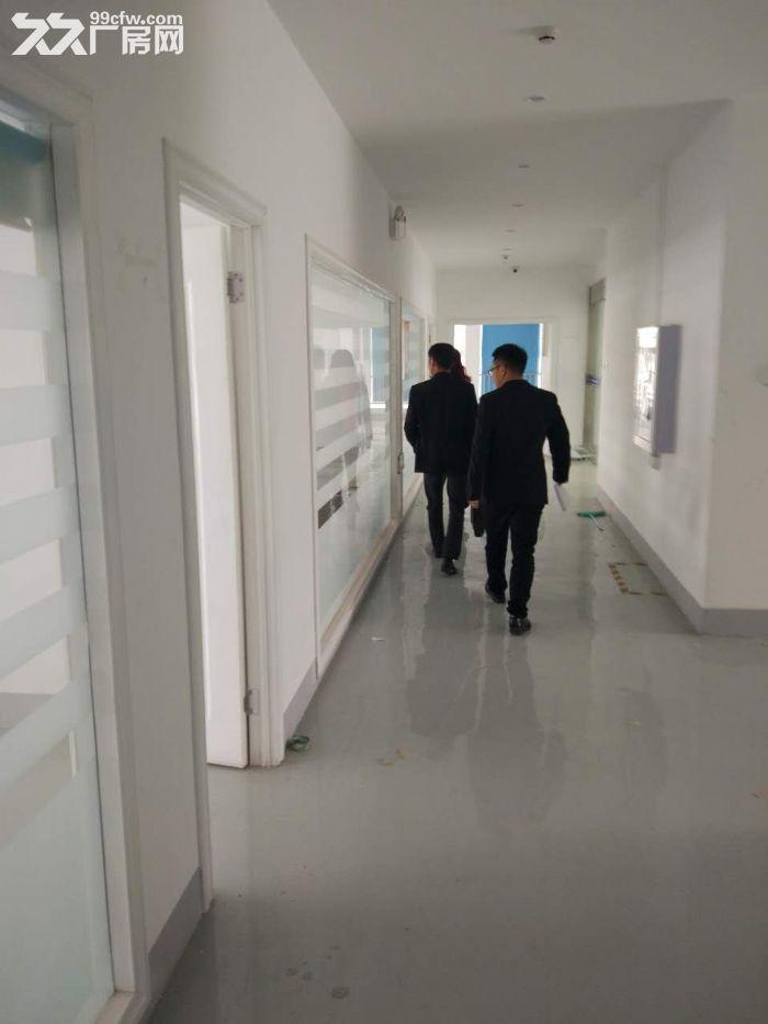 江夏区经济开发区藏龙岛厂房出租-图(4)