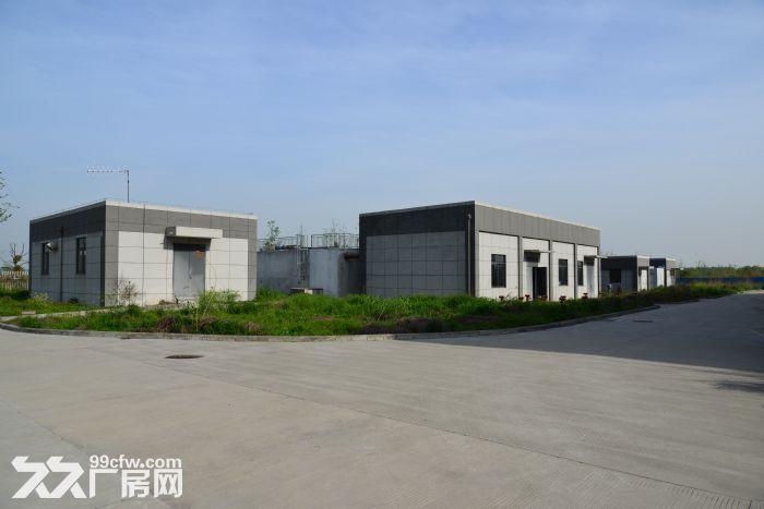 园区内标准化厂房,具备入驻条件-图(1)