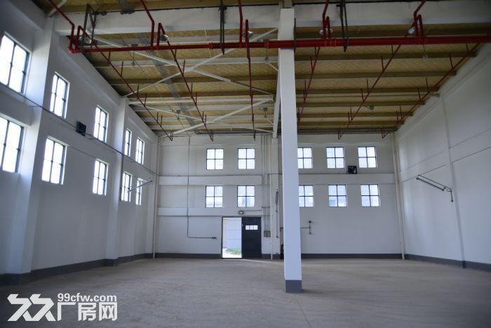园区内标准化厂房,具备入驻条件-图(2)