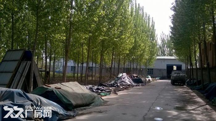 周村南郊镇方家村厂房出租-图(3)