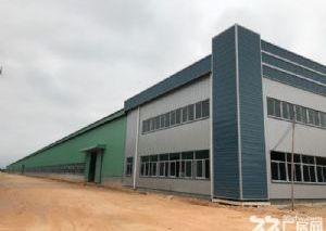 鹤山工业城全新钢结构厂房出售
