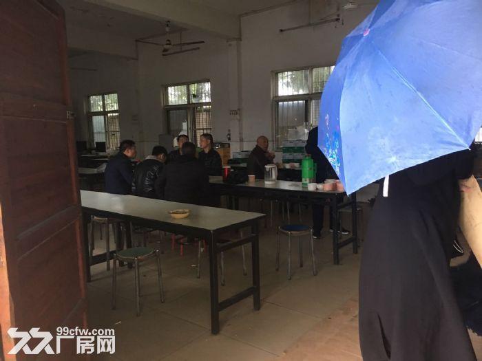 东西湖吴家物流园高台库仓库出租-图(5)