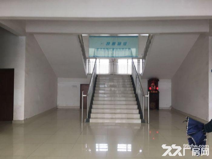东西湖吴家物流园高台库仓库出租-图(6)