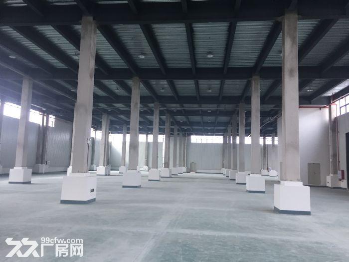 翔安大道旁边全新厂房仓库出租-图(2)