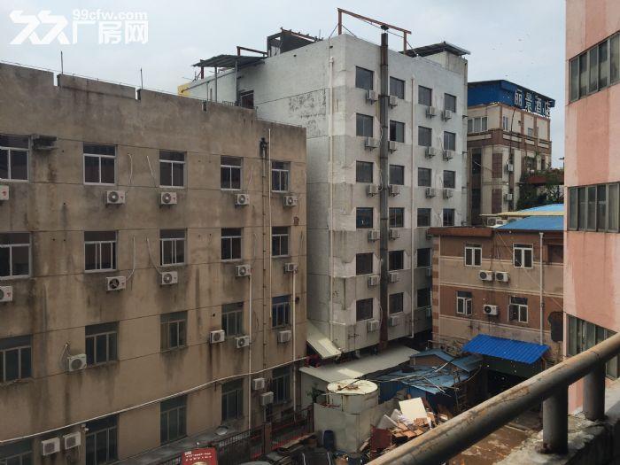 湖里区华嘉路27号标准厂房出租-图(1)