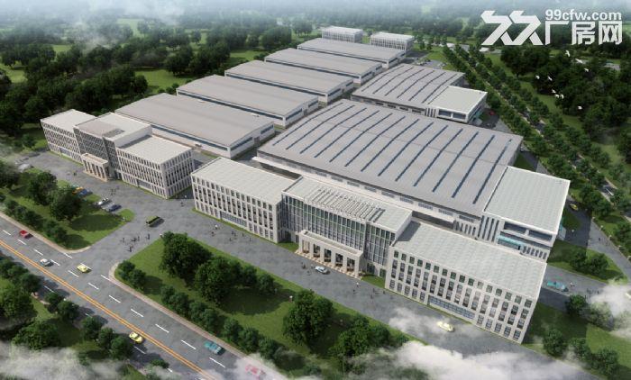 武清电商园大面积标准丙二高台、平台库出租-图(5)