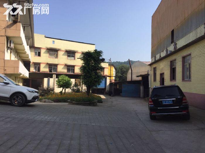 中梁镇主干道8880平方优质厂房出租(可分租)-图(4)