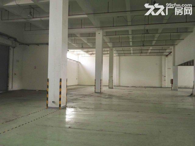 保税区业主直售标准单层厂房可办公+仓储可注册-图(4)