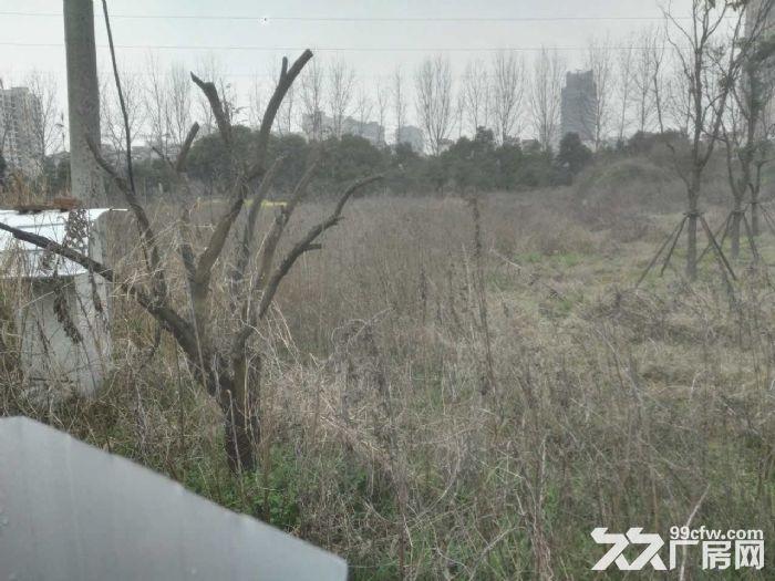 惠山经济开发区12亩国土转让有证-图(2)