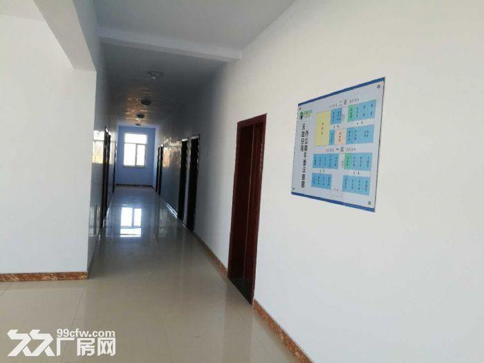 十二连城乡工厂出租-图(4)