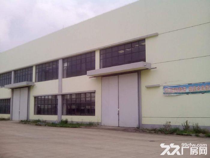125亩工业用地大厂房仓库空地转让或出租,位置好,欢迎实地考察-图(1)
