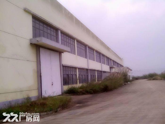 125亩工业用地大厂房仓库空地转让或出租,位置好,欢迎实地考察-图(3)