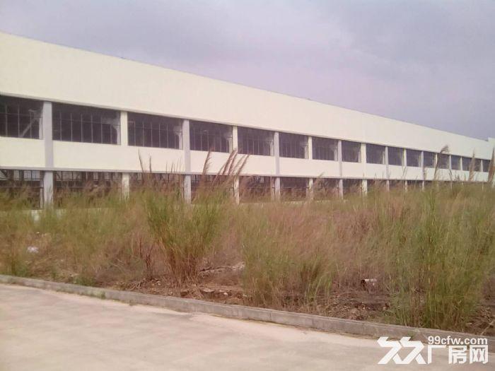 125亩工业用地大厂房仓库空地转让或出租,位置好,欢迎实地考察-图(5)
