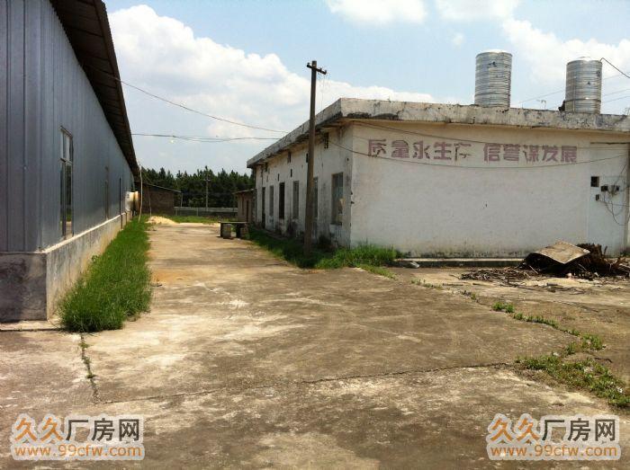 急出租1000平米厂房-图(3)