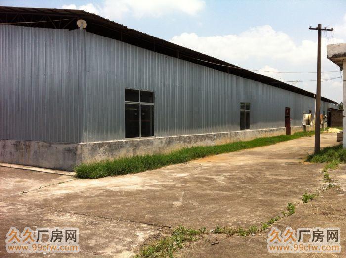 急出租1000平米厂房-图(4)