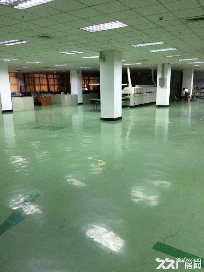 塘厦沙湖靠观澜1800平3楼带办公室标准厂房出租-图(1)