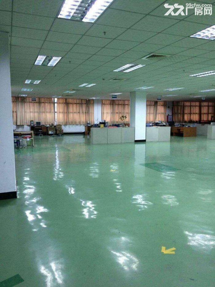 塘厦沙湖靠观澜1800平3楼带办公室标准厂房出租-图(2)