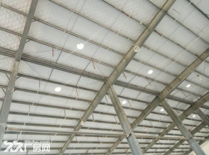 丙类二级高标准仓库厂房800到5500平米出租-图(4)
