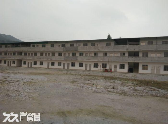 太阳村场地厂房出租出售-图(3)