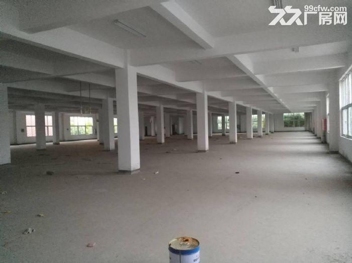 厂房,办公室,仓库出租2400平方可常期出租直租中介勿扰-图(4)
