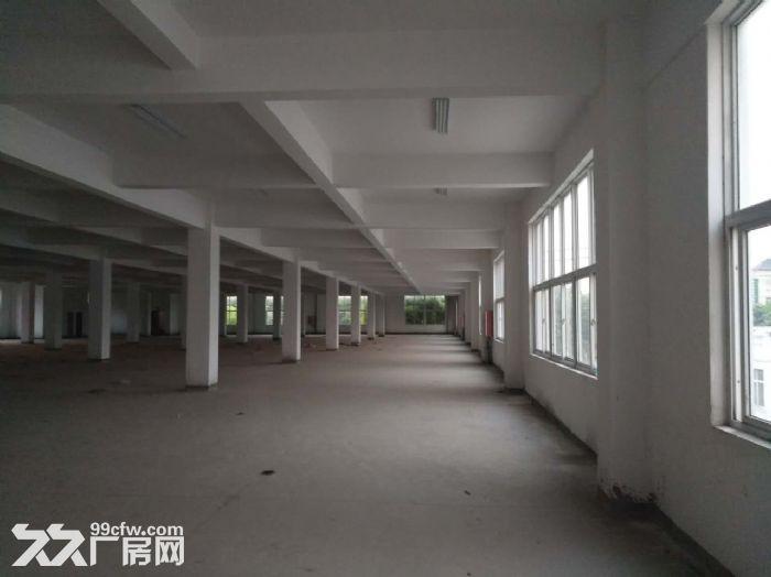 厂房,办公室,仓库出租2400平方可常期出租直租中介勿扰-图(5)
