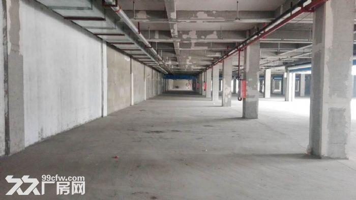 和平西街黄金位置地下停车场整体承包经营-图(6)