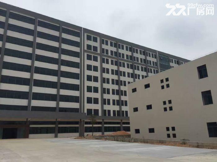 鹤山大型工业城10000方标准厂房招租(可独门)-图(1)