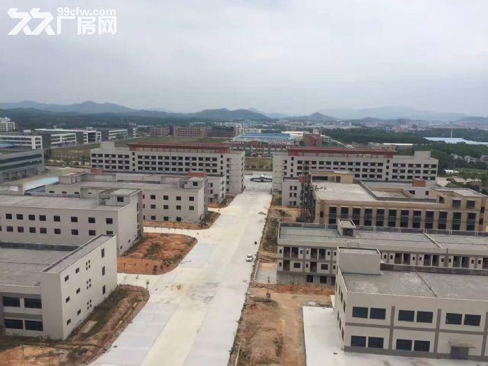 鹤山大型工业城10000方标准厂房招租(可独门)-图(2)