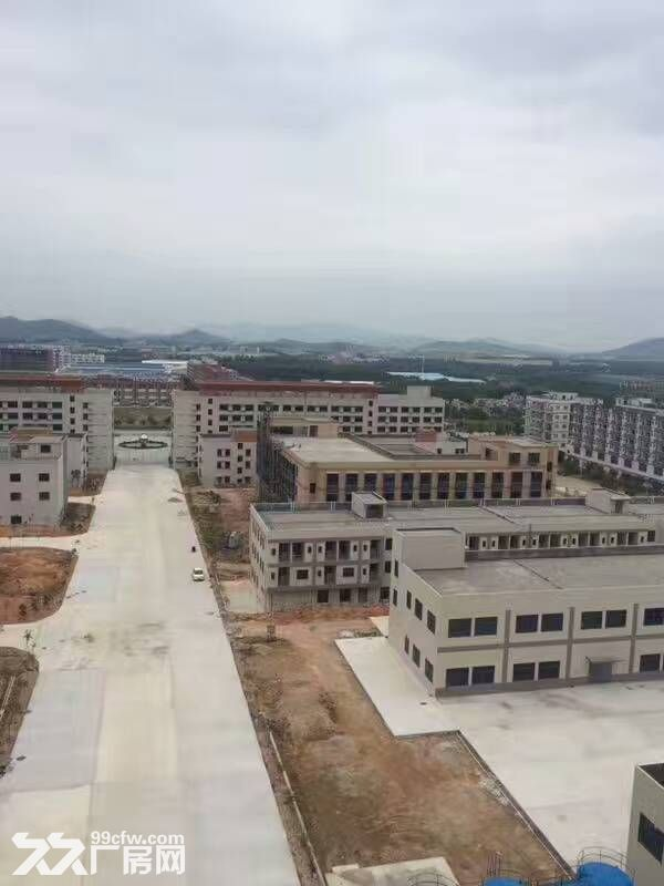 鹤山共和20000方标准厂房招租(工业与生活时尚一体)-图(3)