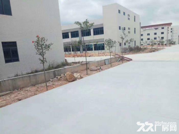鹤山共和20000方标准厂房招租(工业与生活时尚一体)-图(4)