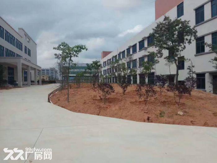 鹤山共和20000方标准厂房招租(工业与生活时尚一体)-图(1)