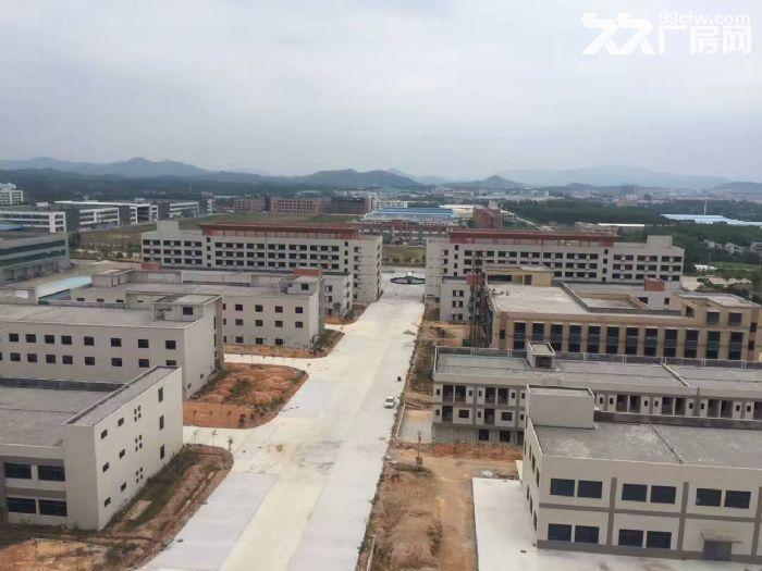 鹤山大型工业城10000方标准厂房招租(可独门)-图(3)
