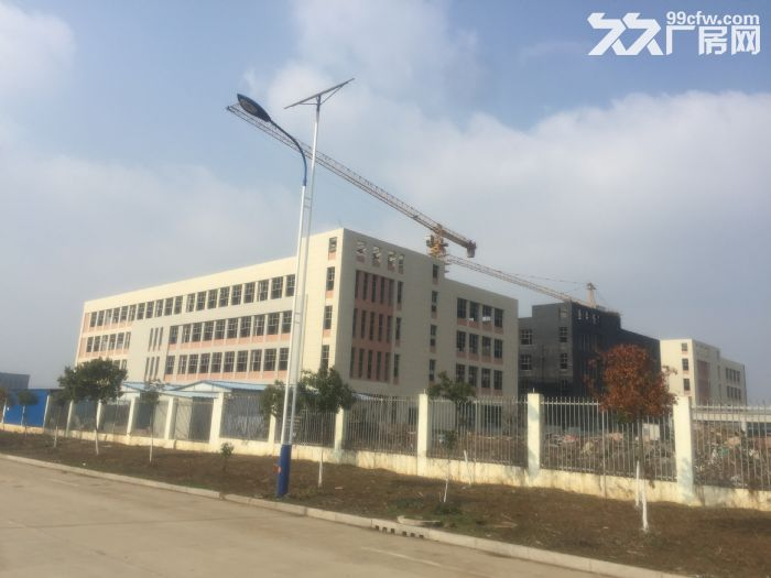 南谯新区大框架、多功能、多用途标准厂房对外热招-图(6)
