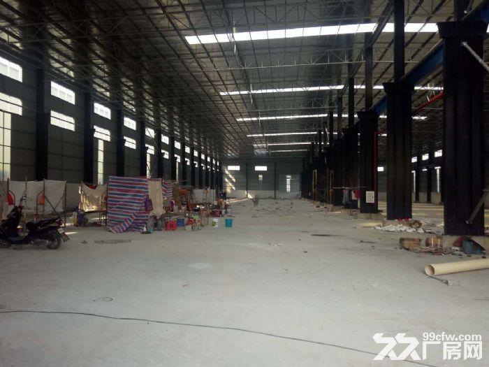 高明福湾工业区单层钢结构厂房出租-图(3)
