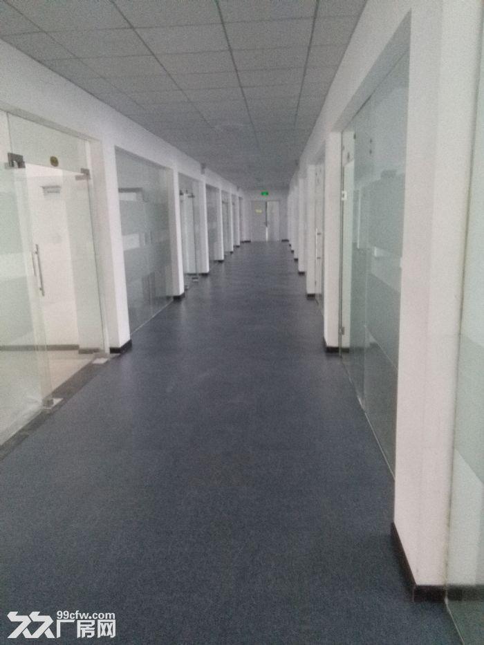 襄阳汉北科技孵化园全新精装创业孵化办公楼标准厂房对外出租-图(2)