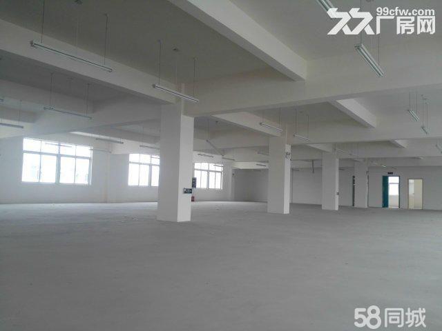襄阳汉北科技孵化园全新精装创业孵化办公楼标准厂房对外出租-图(4)