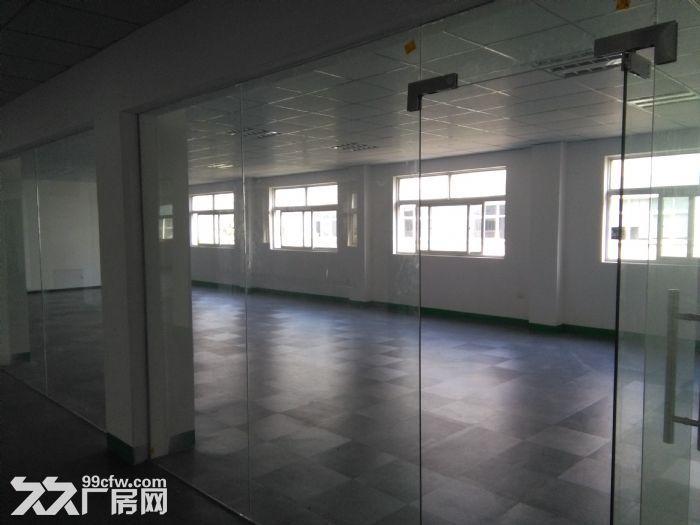 襄阳汉北科技孵化园厂房出售-图(2)