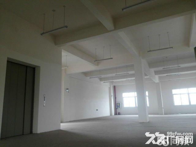 襄阳汉北科技孵化园厂房出售-图(4)