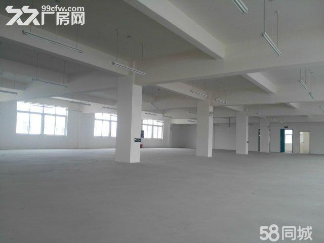 襄阳汉北科技孵化园厂房出售-图(5)