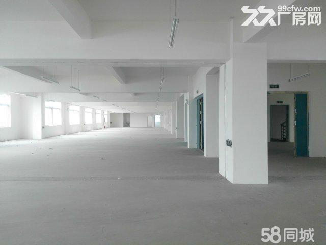 襄阳汉北科技孵化园厂房出售-图(6)