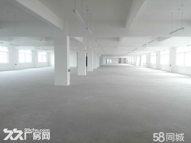 襄阳汉北科技孵化园厂房出售-图(7)
