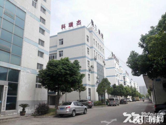 襄阳汉北科技孵化园厂房出售-图(8)