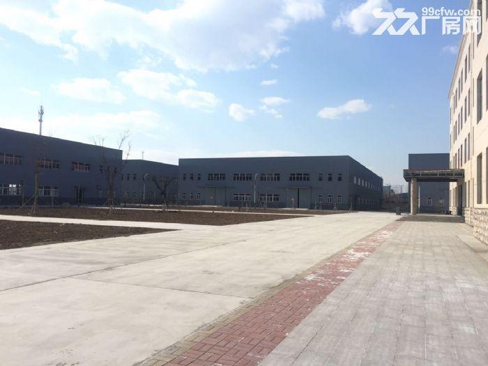 汉沽管理区厂房、办公楼出租1800−3600平-图(6)