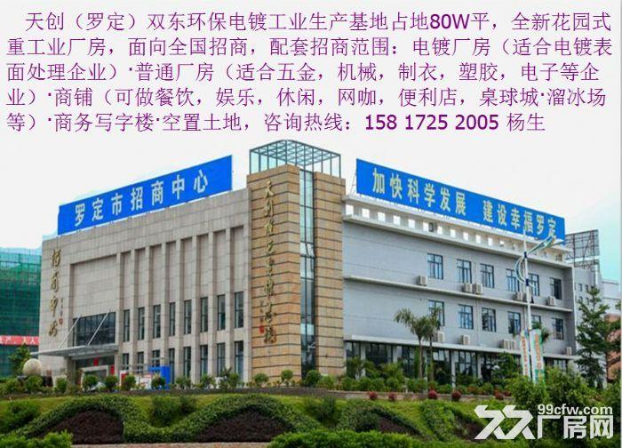 罗定天创双东环保工业园区80W平方园区现房出租-图(1)