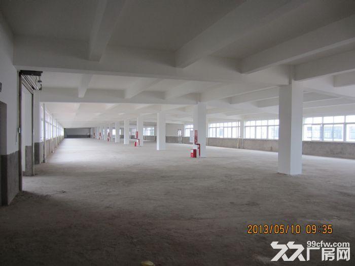 罗定天创双东环保工业园区80W平方园区现房出租-图(2)