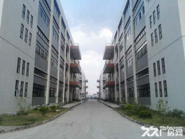 罗定天创双东环保工业园区80W平方园区现房出租-图(5)