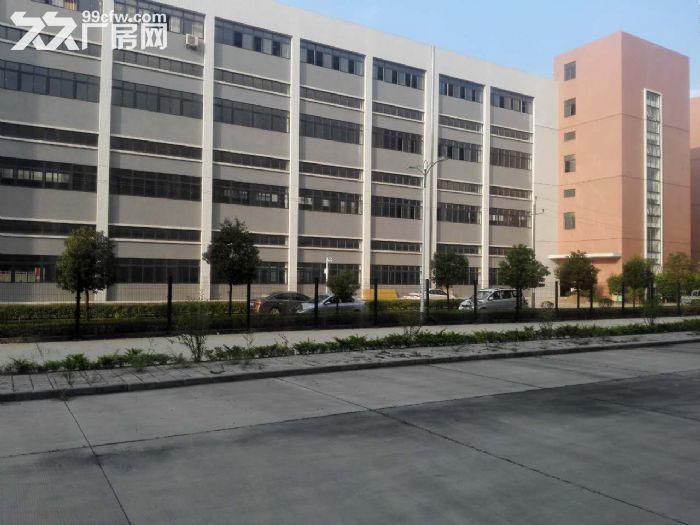 罗定天创双东环保工业园区80W平方园区现房出租-图(6)