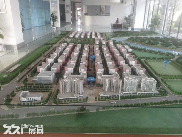 罗定天创双东环保工业园区80W平方园区现房出租-图(7)
