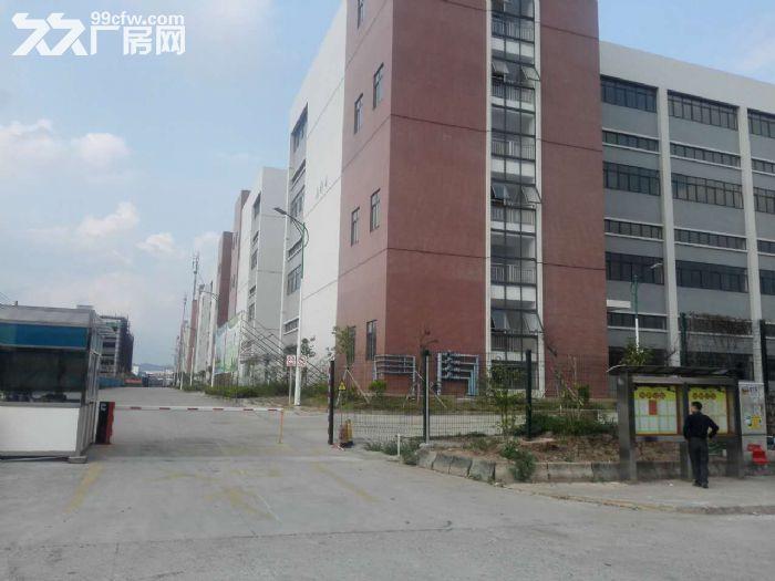 罗定天创双东环保工业园区80W平方园区现房出租-图(8)