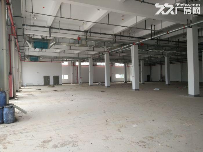 锡山区张径镇独门独院9000平高标仓库出租-图(2)
